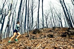 nbphotog-trailrunning-crossfit-2